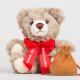 Der Leuchtfeuer Teddy 2019